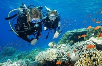 Scuba diving dive packages